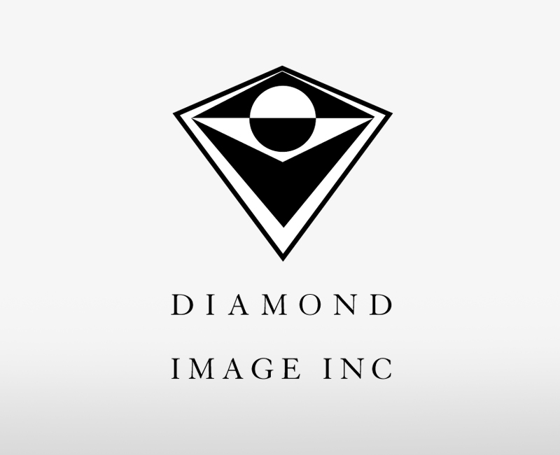 Diamond Image Inc